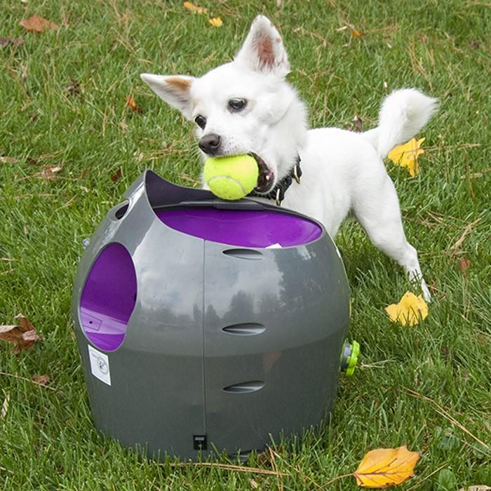 Köpek Topları-Köpek Oyuncakları
